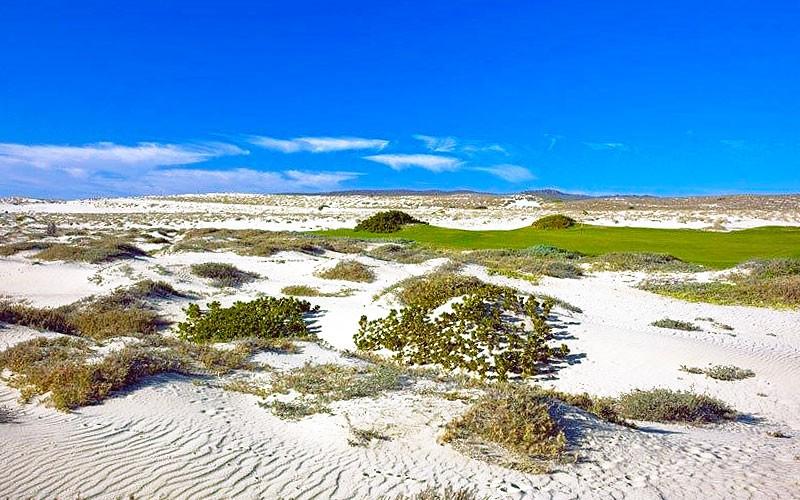 golf-diamante-dunes-course-009